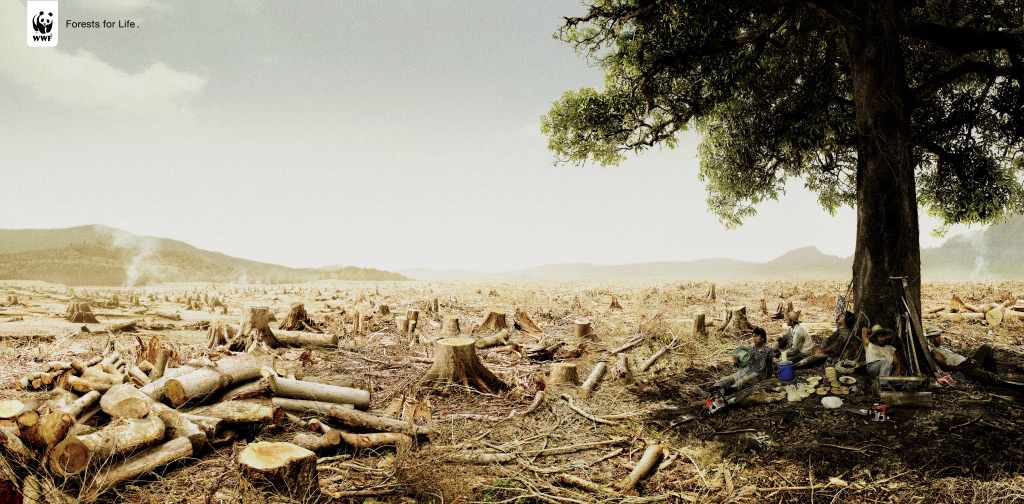 environment essay the devastation of deforestation Argumentative persuasive essays environment - deforestation and the deforestation is the permanent devastation of cause-effect essay: deforestation.